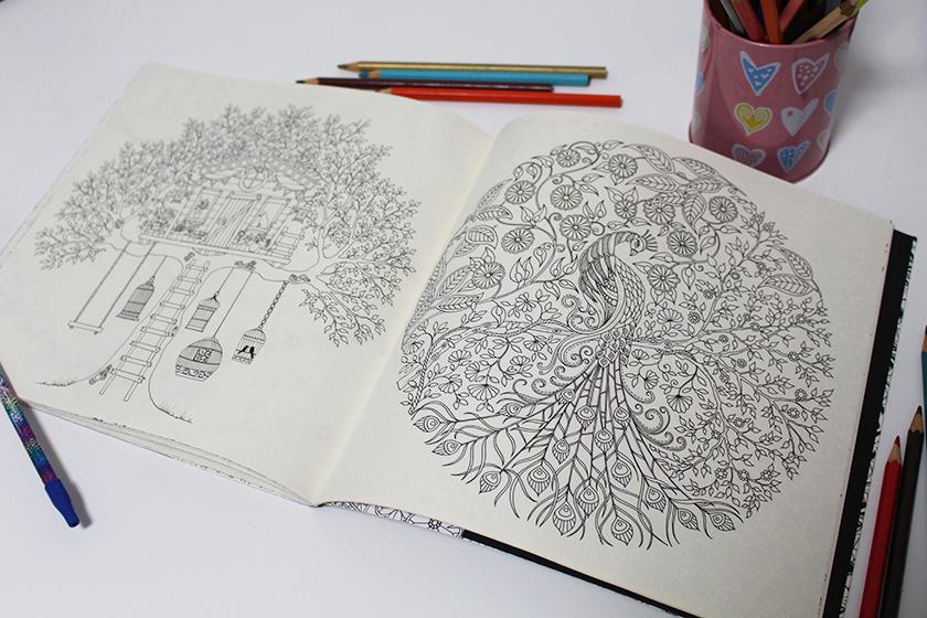 jardimsecreto05